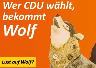 2016wolfjpg